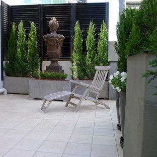 Idee per un giardino chic esposto a mezz'ombra sul tetto in estate con un giardino in vaso