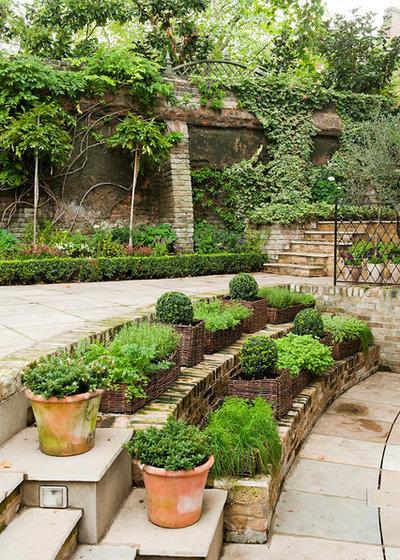 American Traditional Garden by buildburo Ltd