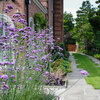 How 7 Landscape Designers Create Beautiful Gardens With Verbena