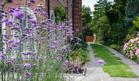 How 7 Landscape Designers Create Beautiful Gardens With Verbena
