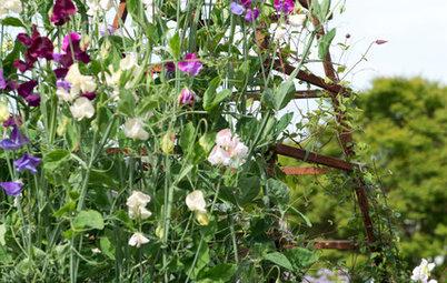 I 10 Segreti del Giardinaggio Inglese Spiegati agli Italiani