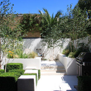 This is an example of a medium sized contemporary back full sun garden in London.
