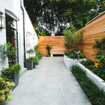 Chiswick Contemporary courtyard