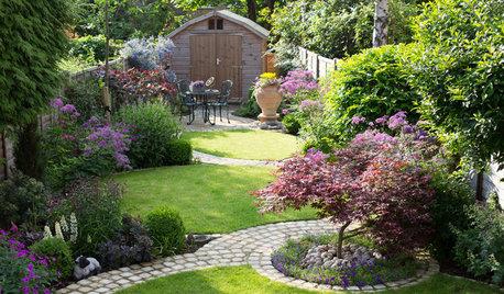 Mit tollen Kurven erwacht ein schlichter Garten zu neuem Leben