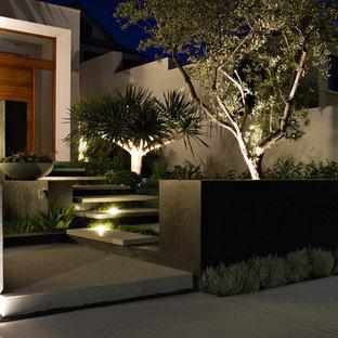 Moderner Vorgarten in Perth