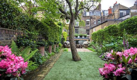 12 Outdoor-Oasen: Die beliebtesten Gartenprojekte im Juli