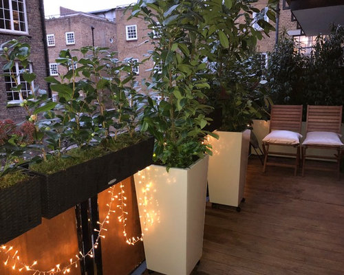 Inspiration For A Small Contemporary Roof Garden In London.