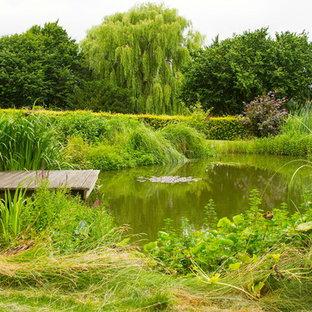 Foto på en stor lantlig bakgård på sommaren, med en damm och trädäck