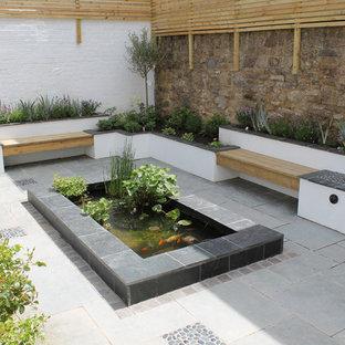 Idéer för en stor modern gårdsplan, med utekrukor och betongplatta