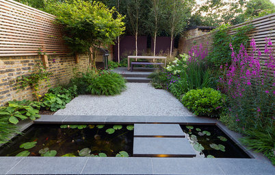 Soak Up Ideas From the Year's Most Popular Urban Gardens