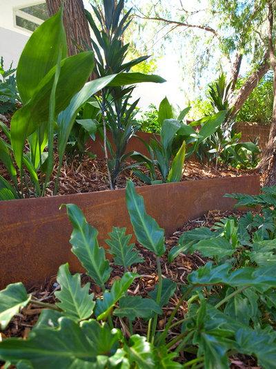 Contemporary Garden By Sustainable Garden Design Perth