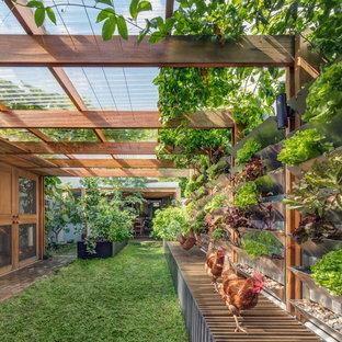 Réalisation d'un petit jardin potager arrière design avec une exposition ensoleillée et des pavés en brique.
