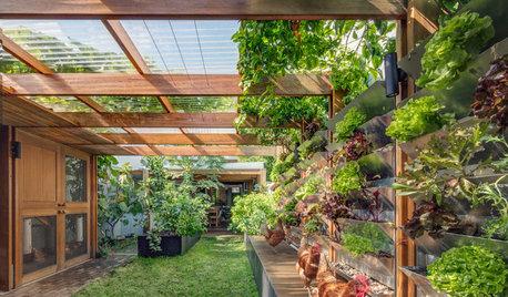Architecture : Une maison durable et son jardin autosuffisant