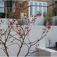 Contemporary Landscape by Josh Ward Garden Design