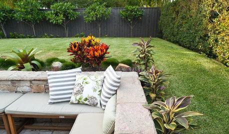 How Do I... Breathe New Life Into My Backyard on a Budget?