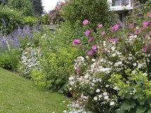 Pregunta al experto c mo dise ar un jard n de bajo - Disenar jardin online ...