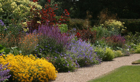 8 Gorgeous Planting Combinations for Fall Gardens