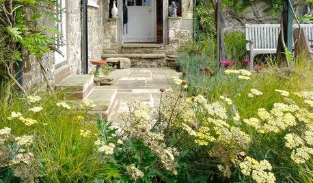 Show Us Your Cottage Garden!