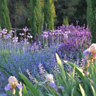 Idee per un grande giardino country esposto in pieno sole davanti casa in primavera