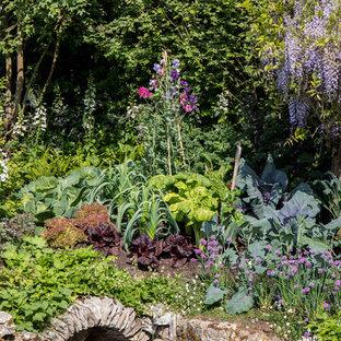 Inredning av en lantlig trädgård, med en damm