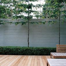Modern Landscape by Laara Copley-Smith Garden & Landscape Design