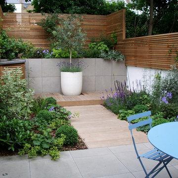 Courtyard garden design in Barnsbury, London