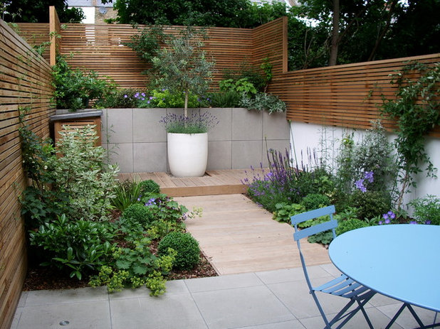 Contemporary Garden by Jenny Bloom Garden Design