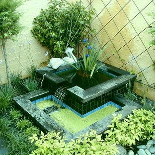 Immagine di un piccolo giardino formale american style esposto a mezz'ombra dietro casa in inverno con fontane