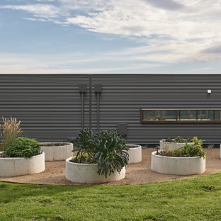 Photo of a large contemporary full sun garden in Melbourne.