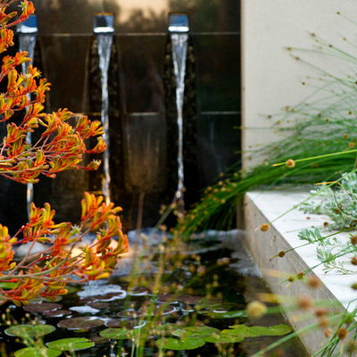 Inspiration for a mid-sized contemporary front yard water fountain landscape in Perth.