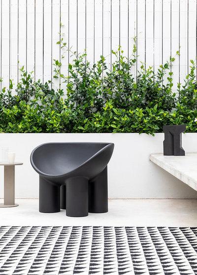 Modern Garden by TomMarkHenry