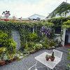 Wie zwei Künstler eine kleine Betonwüste zur üppigen Gartenoase machten