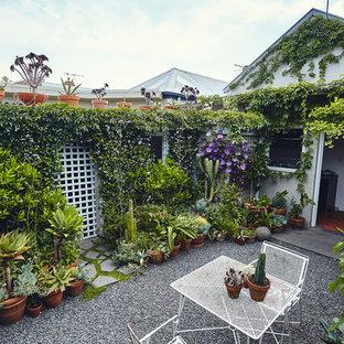 David and Sean's Garden