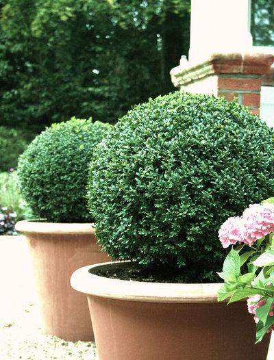 Klassisk Have by Laara Copley-Smith Garden & Landscape Design