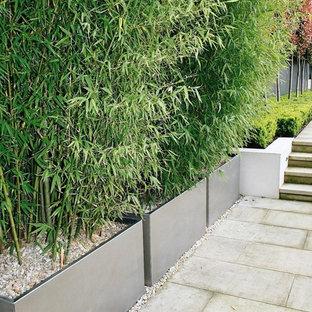 Design Elements In the Garden