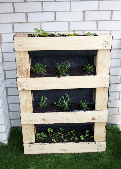 Сад DIY Project: How to Build a Vertical Pallet Garden