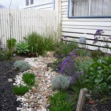Modern Landscape by Gardens in Abundance
