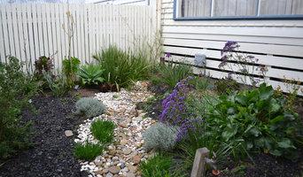 Dry creek bed in the garden