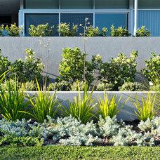 Modern Landscape by Tim Davies Landscaping