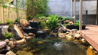 Ecosystem Koi Pond - The Hill, Newcastle NSW