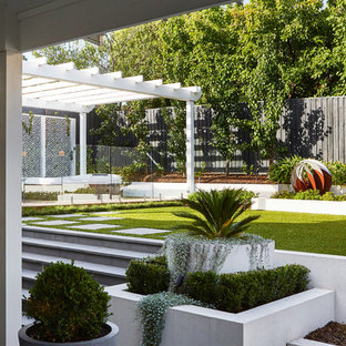 Mid-sized contemporary backyard garden in Melbourne.