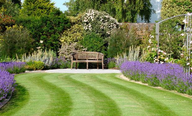 Traditional Garden by Roger Webster Garden Design
