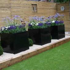 Contemporary Landscape by Inspired Garden Design