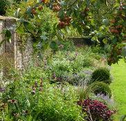 Fi Boyle Garden Design Warminster Wiltshire Uk Ba12 6qd Houzz