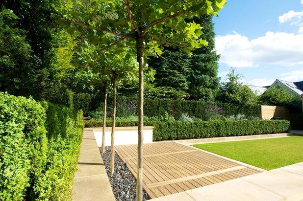 Contemporary Garden by Barnes Walker Ltd - Landscape Architects
