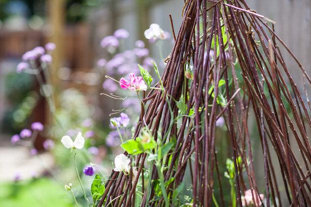 Modern Landscape by Simon Orchard Garden Design