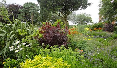 Grüner Daumen zu vermieten! So helfen Ihnen Garten-Experten