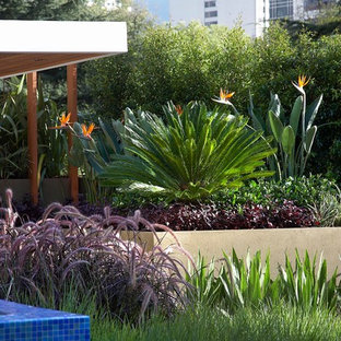This Is An Example Of A Contemporary Retaining Wall Landscape In Melbourne