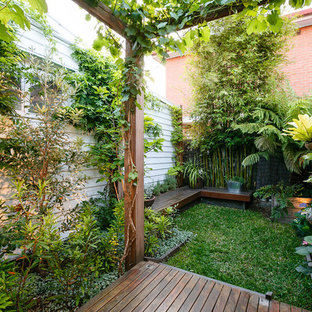 75 Beautiful Small Tropical Landscaping Pictures Ideas March 2021 Houzz
