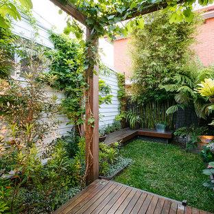Geometrischer, Kleiner Kolonialstil Garten hinter dem Haus mit Dielen und Gartenmauer in Melbourne